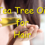 tea tree oil for hair