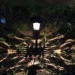 Solar Lights for Garden